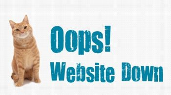 website-down-hosting-reviews-bd
